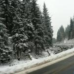 Droga w czeskich Karkonoszach