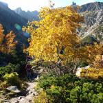 Barwy jesieni w górach