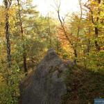 Kolorowa jesień na Witoszy