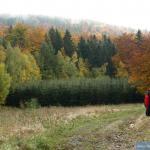 W drodze na Grabowiec