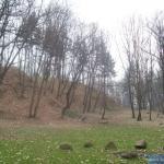 Fragment Parku na Kamiennej Górze