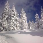 Zima pod Szrenicą