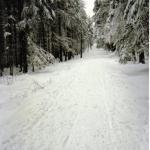 Zimą na szlaku do Wodospadu Kamieńczyka