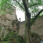 Baszta i mury zamku